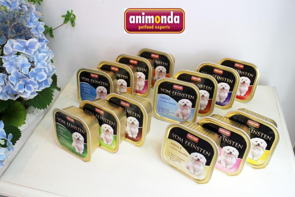 animondaアダルト