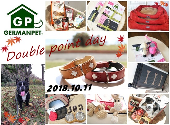 20181010wpointday